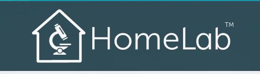 HomeLab™ Logo